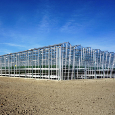 Venlo Polycarbonate/Glass Greenhouse