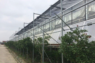 Outside Shading System of Greenhouse