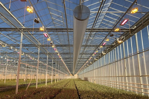 Galvanized Steel vegetable greenhouse