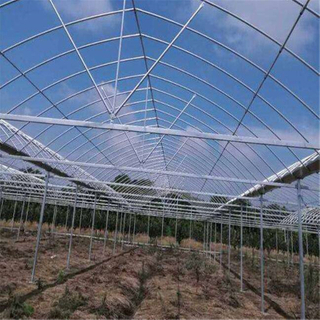 Hydroponic Steel Structure Multi-span Polycarbonate Agricultural Greenhouse for Vegetables/flowers/fruits/garden/tomato/crop/corn