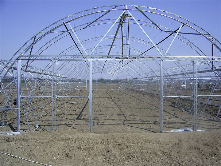 High Quality Rain Gutter Polycarbonate Greenhouse Steel Structure