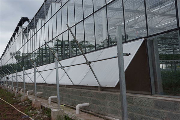 Greenhouse Ventilation System for Temperature Reduction