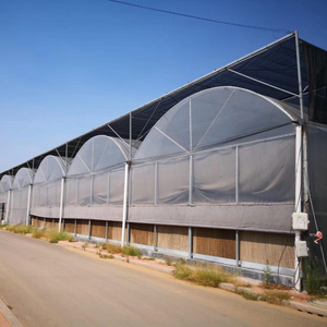 High Quality Multi-span Film Plastic Greenhouse for Agriculture