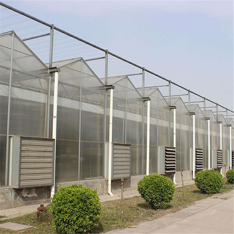 Polycarbonate High quality cheap price Hydroponic Agricultural PC Greenhouse for Vegetables/flowers/fruits/garden/tomato/crop/corn