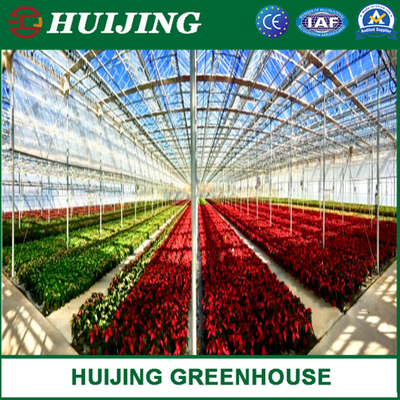 PC Sheet Agriculture Plastic Film Glass Sheet Multi-Span Polycarbonate Greenhouse