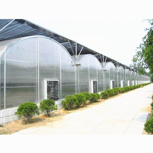 Arch Type Steel Structure Poly Film/PC Sheet Covered Greenhouse for Vegetables