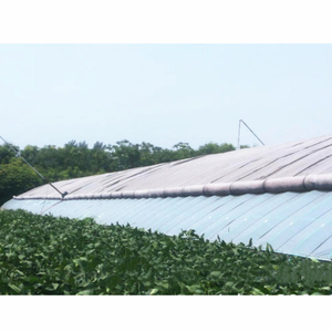 Solar Greenhouse with Earthen Back Wall for Vegetable/Hydroponics/Tomato Cultivation