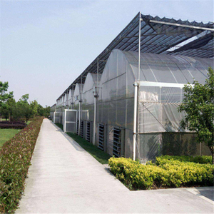 Agricultural Polycarbonate High quality cheap price Hydroponic Agricultural PC Greenhouse for Vegetables/flowers/fruits/garden/tomato/crop/corn