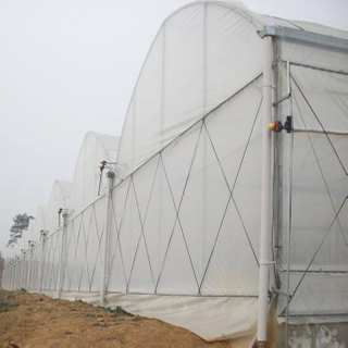 Greenhouse Roof / Side Ventilation System