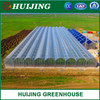 Low Price Commercial Agriculture Green House Wide Wide PE Plastic Film Greenhouse for Farming