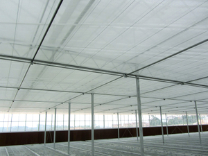 The Cheapest Multi-Span Greenhouse Inside Shading System with Factory Price