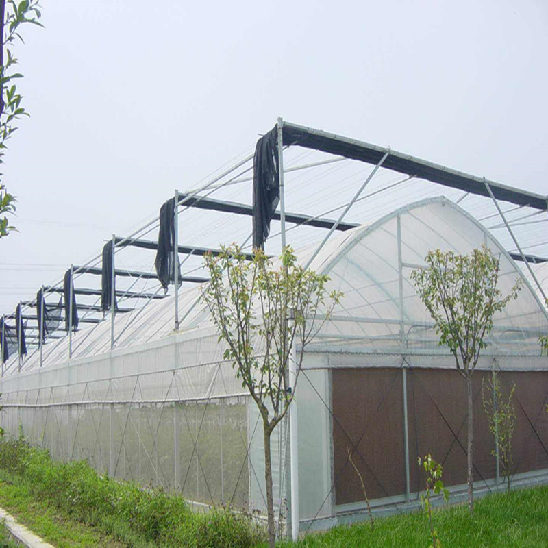 Multi-span Agricultural Hydroponic greenhouse with high quality outside shade System Greenhouse for Vegetables/flowers/fruits/garden/tomato/crop/corn