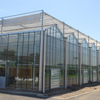 Galvanized Good Price Glass Greenhouse for Agriculture