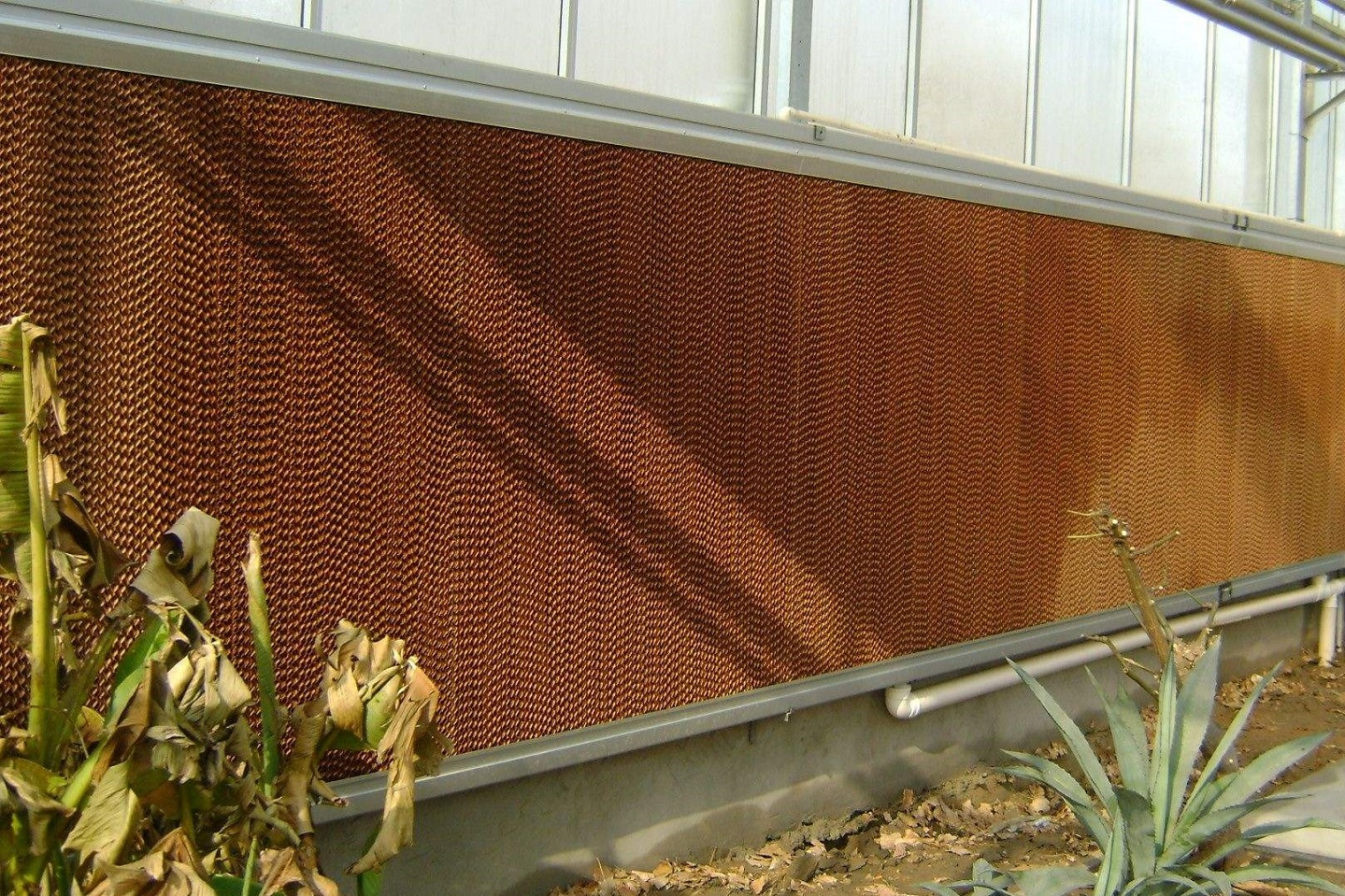 Greenhouse Water Evaporative Cooling System