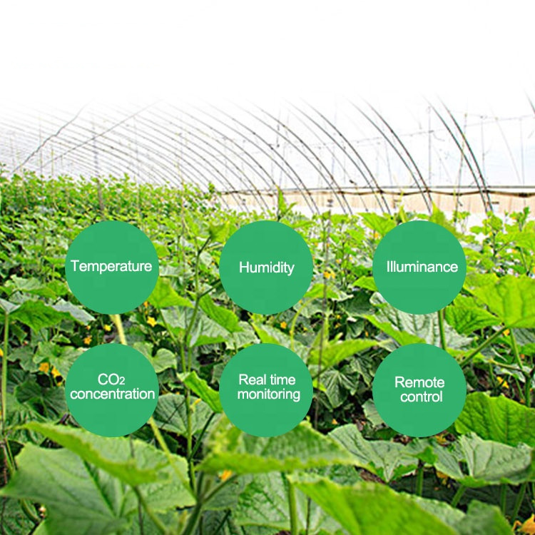 Smart Agriculture Remote Monitoring System, Intelligent Greenhouse Irrigation Monitoring System Scheme Design
