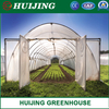 China Supplier Agriculture Single Span/Multi Span Tunnel Plastic Film Greenhouse for Flowers/Tomato/Lettuce Planting