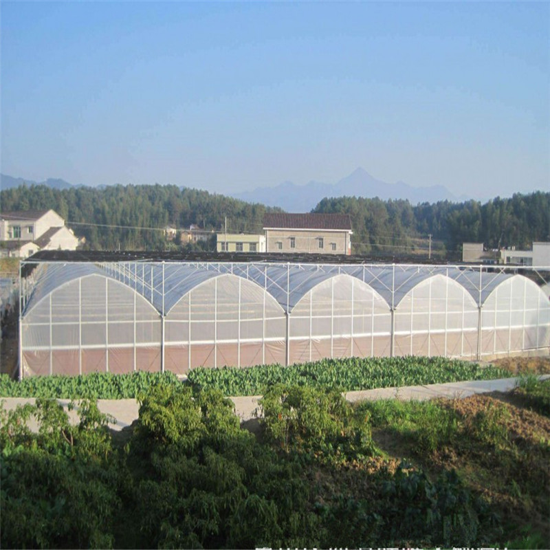 Hydroponic Agricultural Polycarbonate High quality Agricultural PC Greenhouse for Vegetables/flowers/fruits/garden/tomato/crop/corn