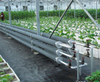 Gas/Coal Burning Heating Systems for Agriculture Greenhouse Growing Vegetables/Strawberry