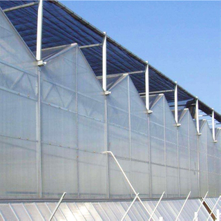 Low Cost Muti-span PC Polycarbonate Greenhouse for Tomato/Cucumber/pepper/Strawberry Hydroponics Growing