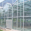 Greenhouse covering glass Hydroponic Venlo Multi-span Polycarbonate Agricultural Greenhouse for Vegetables/flowers/fruits/garden/tomato/crop/corn